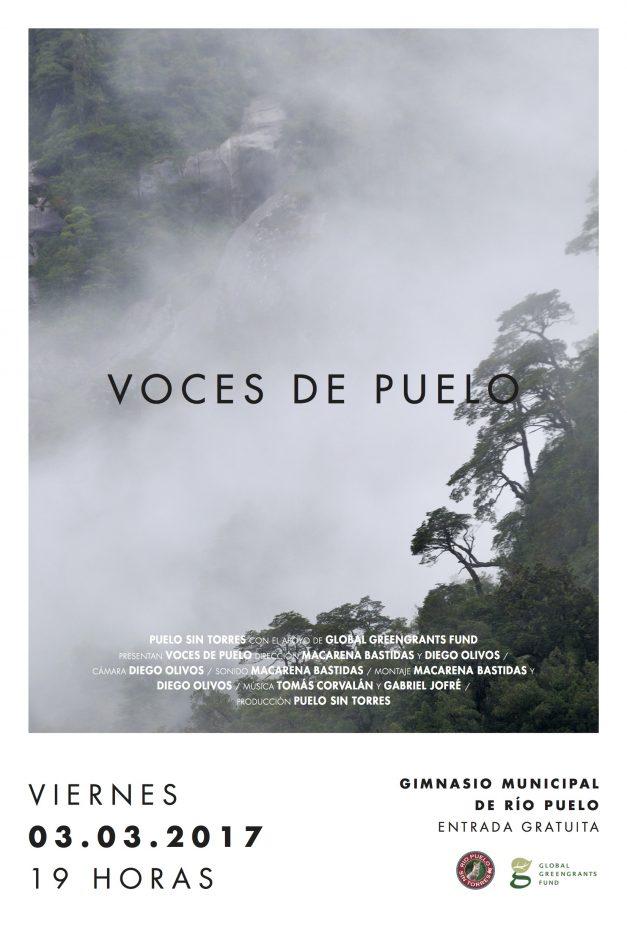 Voces del Puelo-afiche-viernes 3